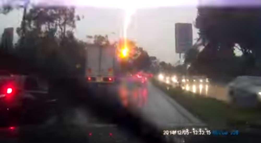 雨天の運転は要注意! 雷が街路樹に落ちて..
