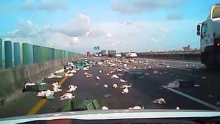 【事故】スティーブ・マックイーンもビックリw 台湾の高速道路上で鶏の大群がトラックから大脱走! 一面鶏だらけに。